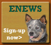 Sign-up now for ENEWS